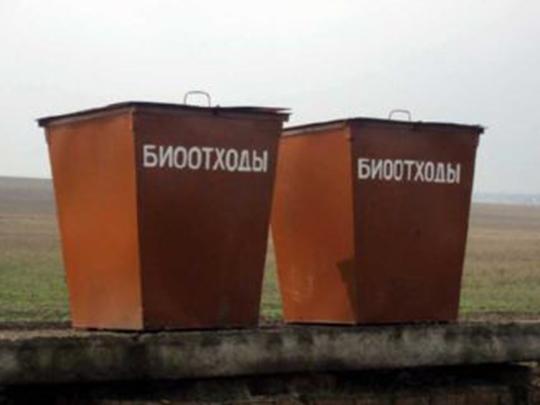 Правила утилизации биологических отходов